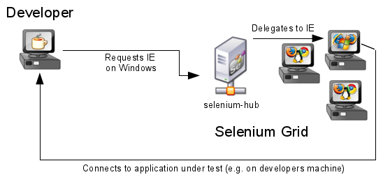 How selenium grid looks like